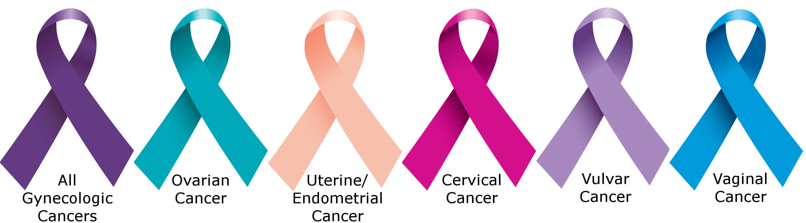 gynecological cancers we treat at gynecologic oncology institute
